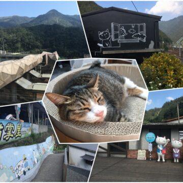 houtong cat village taiwan taipei