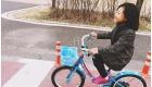 seoul bike   han river  bike rental in seoul